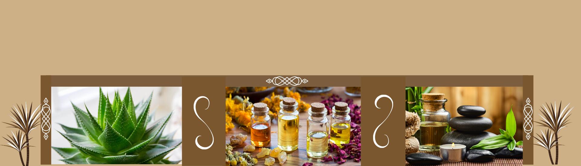 Huiles de massage : Découvrez notre sélection